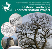 Historic Landscape Characterisation Report 2008